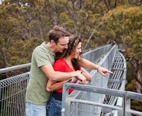 Valley of the Giants Tree Top Walk - Hervey Bay Accommodation