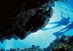 Deep Sea Divers Den - Hervey Bay Accommodation